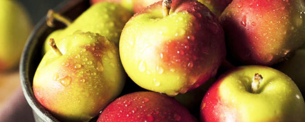 (Italiano) Autunno, è tempo di mela rosa
