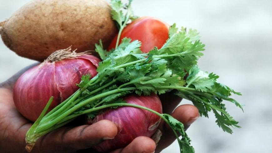 Mangiare biologico, cosa significa?